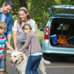 5-point travel checklist for you and your pets