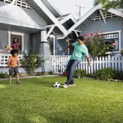 6 steps to a championship caliber lawn