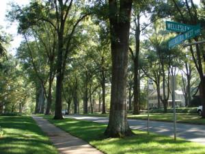 Meyers Park