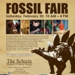 Fossil Fair in North Carolina